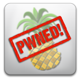 pwnagetool-pwned